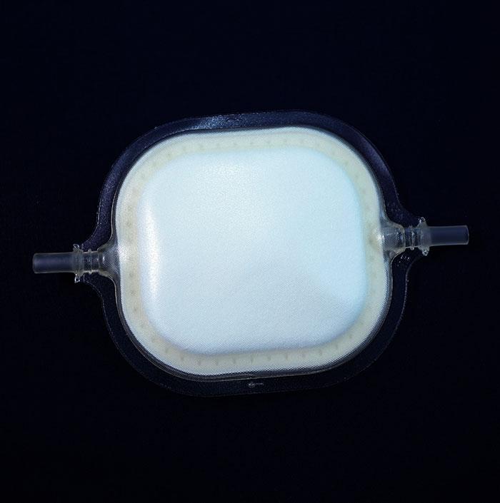 WB Filter FIWB450-SX10